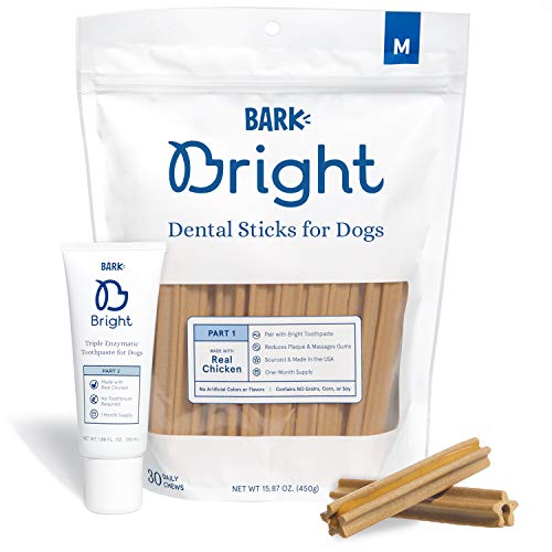 BarkBox Bright Toothpaste & Toothbrush Chews Kit - Dental Treats for Dogs and Cats | Vet-Recommended...