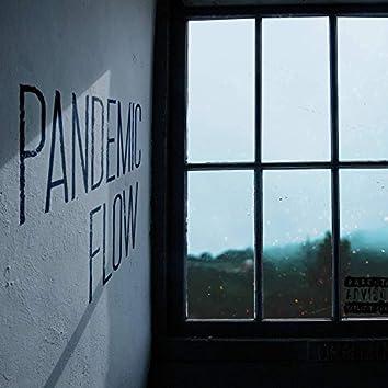 Pandemic Flow
