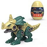 EternalFire Take Apart Dinosaur Toys for Kids 5-7-STEM Educational Construction Monoclonius Toy with Screwdriver Kids Building Toy-Construction Play Learning Gifts for Kids