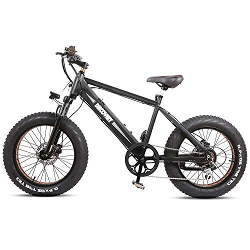 NAKTO 300W Electric Bike 20' Fat Tire Electric Bikes for Adults 6-Speed Electric Bicycle with 48V Battery
