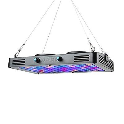 Luxbird 200W LED Aquarium Spectre Complet Lumière Aquariophilie Decoration Lumineux Dimmable Rampe pour Anti Algues,Recifal,Cultiver Coral,Poisson Reef,84 LED Lampes Nano LPS PLC Eclairage Eau de Mer