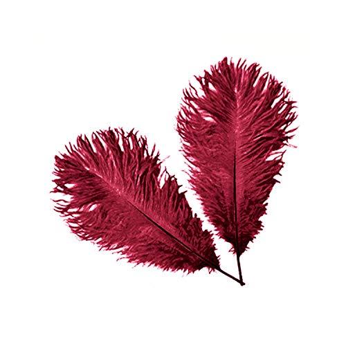 Weddecor Lot de 5 plumes d'autruche naturelles Bordeaux 35-40 cm de long pour mariage, maison, décoration de costumes, embellissement, art et artisanat, fêtes