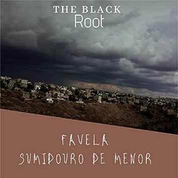 Favela Sumidouro de Menor