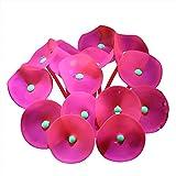 CJFael Ornamento artificial de acuario para decoración de acuario, simulación de flores de agua de silicona vívida artificial para acuario rojo