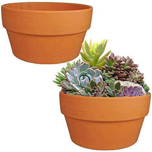Winlyn 2 Pack 8 Inch Large Terracotta Pots Clay Flower Pots Shallow Planters Succulent Pots with Drainage Holes for Indoor Outdoor Plants