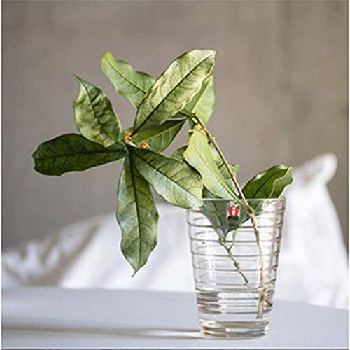 こちらも全く同じもの!お花や多肉植物など、観葉植物をこんな風にお家に飾ってみるのも良いですね。