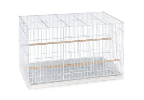 White Finch Flight Cage