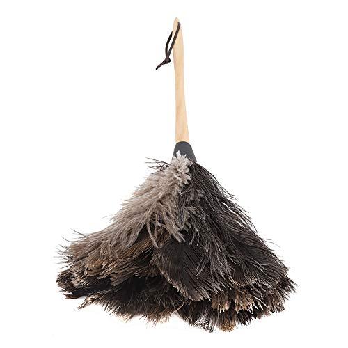 Plumero De Pluma De Avestruz Antiestático Pavo Lavable Hecho a Mano con Mango Largo De Madera para Muebles para El Hogar