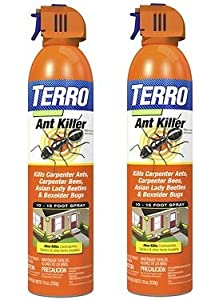 Best Ant Killers Top 10 Ant Killing Products Trees Com
