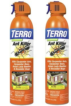 Top 5 Best Ant Sprays Reviewed 2020 Edition Pest Strategies