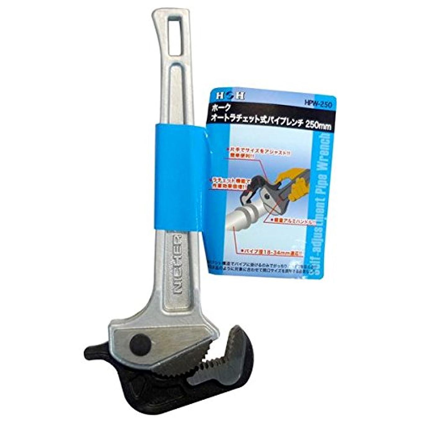 カイウスポジション持続的日用品 DIY (業務用2個セット) オートラチェットパイレン 【250mm】