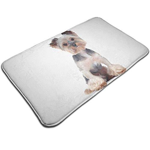 GOSMAO Felpudo de Entrada Alfombra Exterior para Puerta Impermeable Lavable Antideslizante Yorkshire Terrier 40X60cm