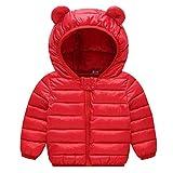 JiAmy Bebé Chaqueta Invierno Abrigo con Capucha Ligero Trajes Ropa de Calle Acolchado Rojo 6-12 Meses