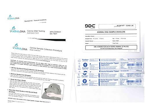 AffinityDNA Chien Exercice Induit Collapse (EIC) Test ADN - Kit de prélèvement d'échantillons à Domicile pour 1 Canin - Test EIC