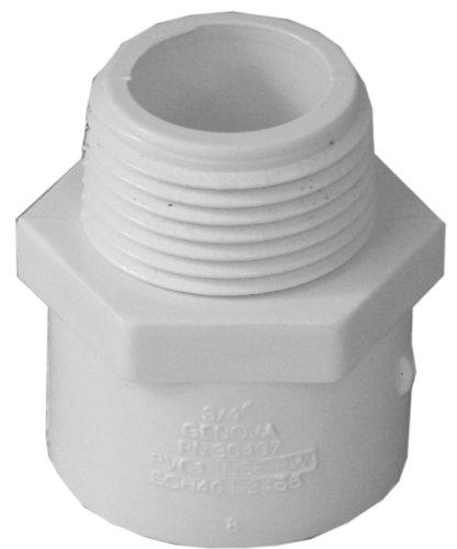 Genova Products 30407CP 3/4-Inch Male Iron Pipe Thread PVC Pipe Adapter Slip by Male Iron Pipe Thread - 10 Pack,White