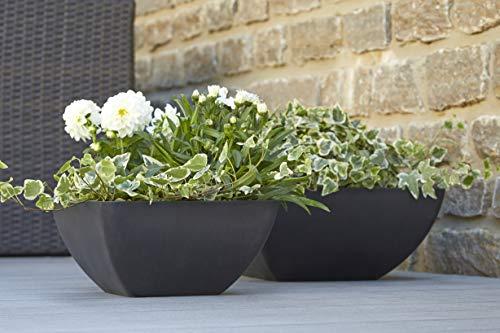 Wunderschöne Pflanzschale/Schale zum Bepflanzen – Eckige Blumenschale - Kunststoff/Kunststoffschale - Winterfest (Groß: 40x40x18cm, Anthrazit)