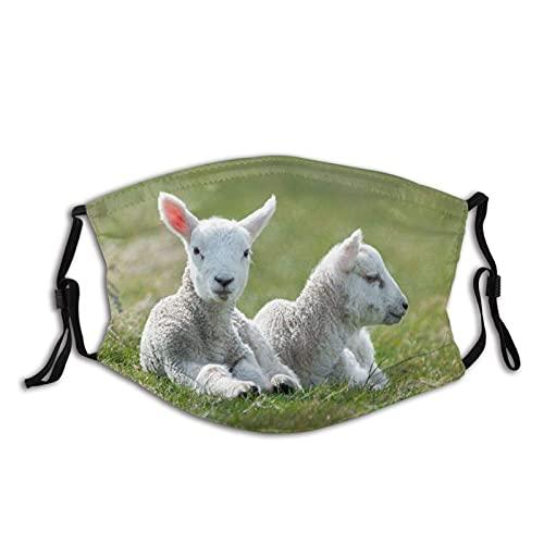 Máscara facial de moda cómoda ovejas corderos blancos dos mentira a prueba de sol moda Bandana Headwear para la pesca
