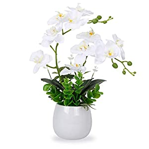 LIVILAN Artificial Orchid White Orchid Faux Orchid Silk Phalaenopsis Real Touch Flowers Artificial Flowers Arrangement Potted Orchid 12 Head with Two Stems Plant Home Table Party Decor