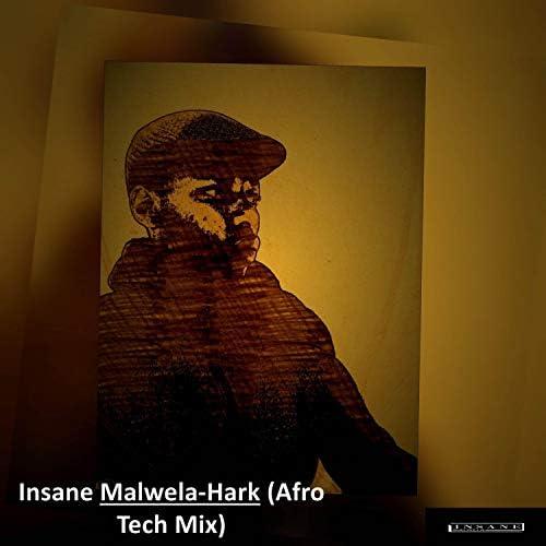 Insane Malwela