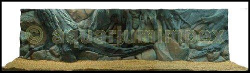 3D Rückwand 200x60 Aquariumrückwand Amazonas