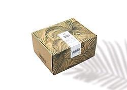 Bonsai Starter Kit für Anfänger I ALL-IN-ONE Plantbox I 24-teiliges Pflanz-Set inkl. Samen, Bambus Topf & Werkzeug I Geschenk Damen & Herren I Anzuchtset exklusive Baumsamen I gardening Geburtstag