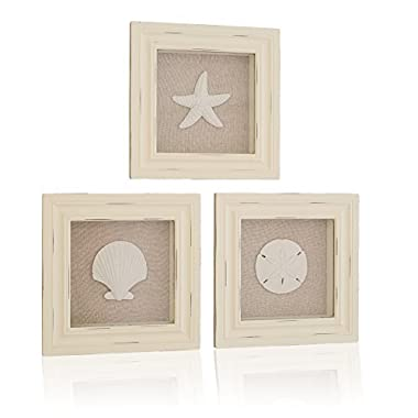 Tumbler Home Custom Set of 3 Shell Shabby Chic Shadow Boxes- Off White Frame 7  x 7  - Shells Mounted on Fabric Background by