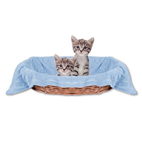Bestlivings Haustierdecke Katzendecke Kuscheldecke Tierdecke, angenehm und super weich in vielen erhältlich (60x80 cm/hellblau - Babyblau)