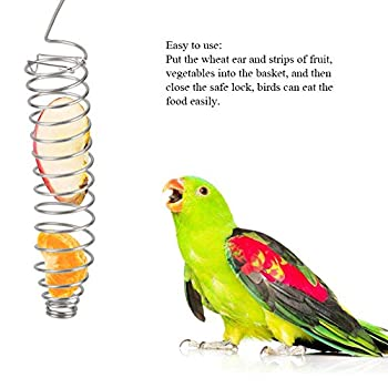 Mangeoire à oiseaux portable en acier inoxydable pour perroquet, nourriture, fruits, légumes, millet, blé, oreille, perruche, calopsitte, conure, gris africain
