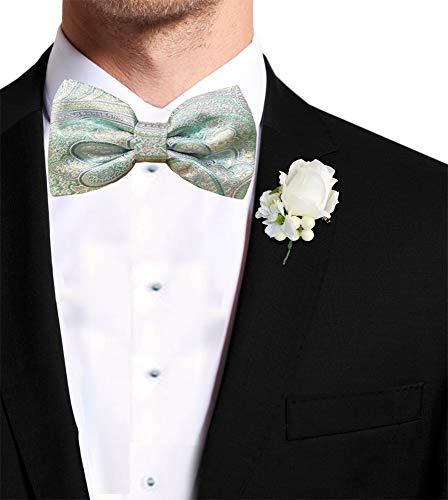 Remo Sartori Homme Cravate