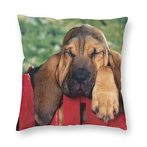 Funda de Almohada Impresa con diseño de Dos Lados, un Perro durmiendo en una Valla roja Funda de Almohada Cuadrada Funda de cojín para sofá Sofá Decoración del hogar