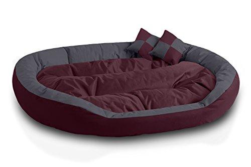 BedDog® 4in1 Hundebett SABA, Wende-Hunde-Kissen oval-rund, großes Hundekörbchen, abwischbares Hundebett mit Rand, für drinnen, draußen, XXXL, Cherry-Rock, Bordeaux-grau