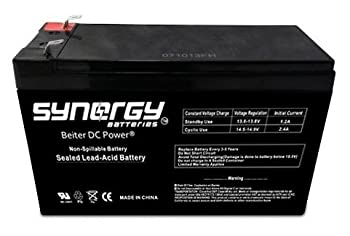 Best synergy batteries Reviews