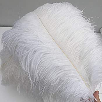 Shekyeon White 16-18inch 40-45cm Ostrich Feather DIY Craft Feather Pack of 10