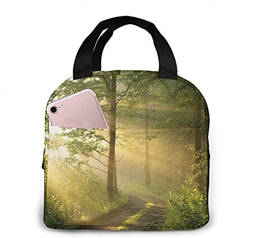 Jupsero Forest Painting - Ropa para perros, morado, con diseño de gafas de sol, bolsa de almuerzo, con aislamiento, para almuerzo, bolso reutilizable, caja de almuerzo para picnic, viajes, o