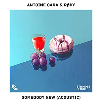 Somebody New (Acoustic)