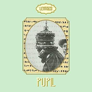 Pupil (feat. Alessandro Vitale,Wise Koala,Simone Iannuzziello,Lorena Cuna)