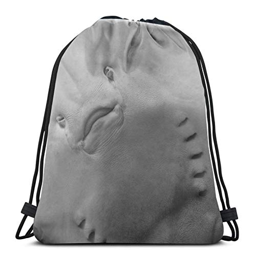 Affordable shop Stingray Under Water Head Gills Drawstring Backpack Bag Lightweight Gym Travel Yoga Casual Snackpack Shoulder bag for Hiking Swimming beach