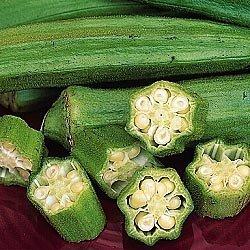 GEOPONICS Cajun Delight Okra (Spezi) - 40 Samen von Seedsurvivor