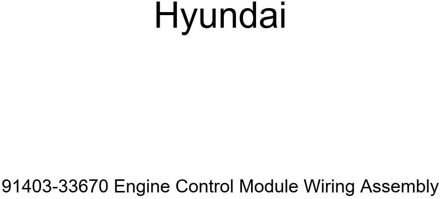 Genuine Hyundai 91403-33670 Engine Module Assembl Control Wiring Max Safety and trust 76% OFF