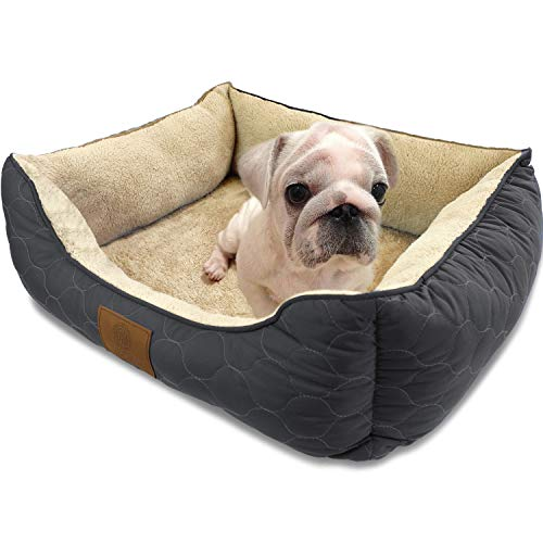 American Kennel Club Circle Stitch Orthopedic Cuddler Pet Bed