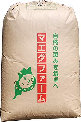 【2年産】玄米 2kg 環境こだわり米 滋賀 みずかがみ レターパックプラス (白米に)