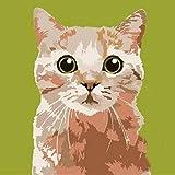 Presione por número de pintura/kit de pintura al óleo de bricolaje/sin marco/por set gato naranja lindo animal niños pintura al óleo kit de regalo de prensa