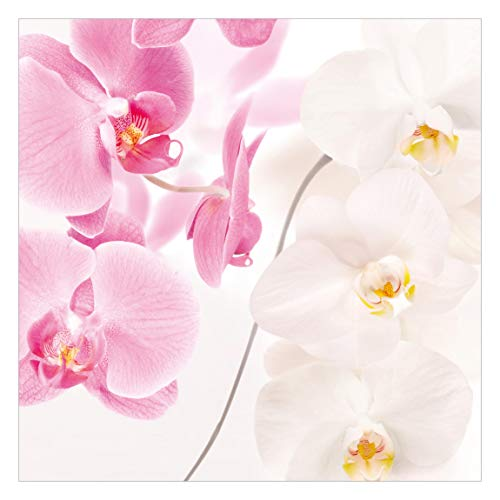 Fototapete selbstklebend - Delicate Orchids - Wandbild Quadrat 240 x 240 cm