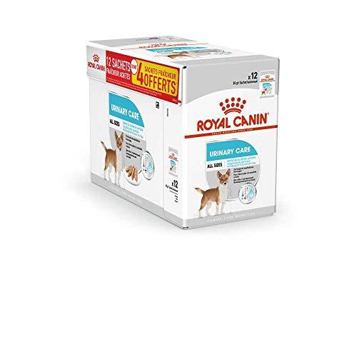 ROYAL CANIN Alimento húmedo Canine Urinary Care para Perros con Sensibilidad Urinaria, Caja Completa 12 Sobres x 85 gr ✅