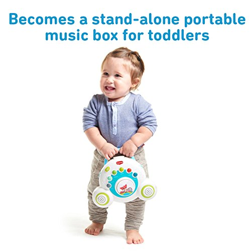 Tiny Love Meadow Days Soothe 'n Groove Mobile