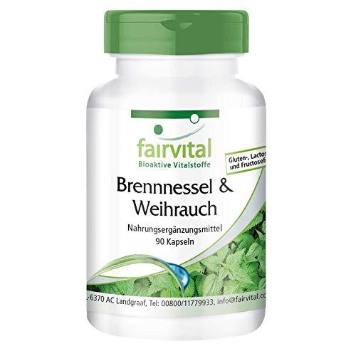 Brandnetel capsules met Boswellia - HOOG GEDOSEERD - VEGAN - 90 capsules - Boswellia serrata met ten minste 65% boswelliazuren