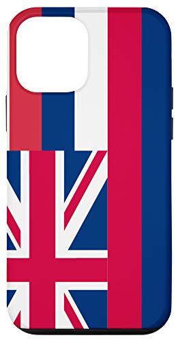 iPhone 12 mini Hawaii Flag State Pride Gifts Case