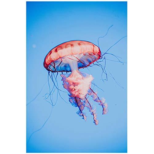 Estilo nórdico Elegante Azul Claro Medusas Impresiones en Lienzo Pinturas de Arte de Pared para la decoración del Dormitorio de la Sala de Estar 11.8x15.7in (30x40cm) x1pcs SIN Marco