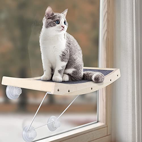 CatRomance -  Catromance Katzen