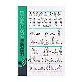 FitMate - Póster de ejercicio de estiramiento - rutina de entrenamiento con pesas libres, decoración del gimnasio en casa, guía de habitación (50 x 76 cm)